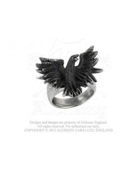 Flocking Raven