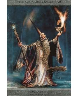 Wizard (The Aquarius Collection)